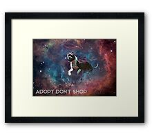 A Phocid in Space (Adopt Don't Shop) Framed Print