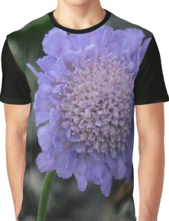 Pincushion Graphic T-Shirt