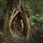 A Fairy Hollow by Karine Radcliffe