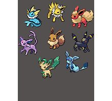 Pixel Eeveelutions V.2 Photographic Print