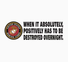 US Armed Forces Marines When It Has to Be Destroyed Overnight Stickers, Shirts, Cases, Totes, Blanket by 8675309