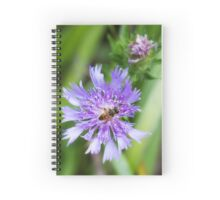 Collecting Pollinator Spiral Notebook