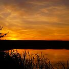 Prairie Harvest Sunset by Digitalbcon