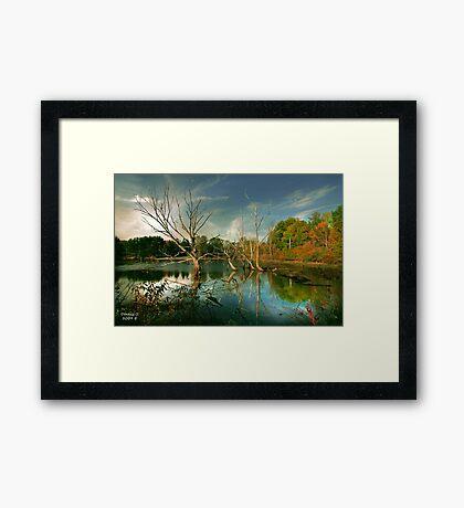""""""" Wonderous """"  Framed Print"""
