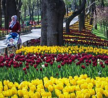Ottoman Tulip Festival, Istinye Park, Istanbul by SuzannemorriS