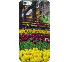 Ottoman Tulip Festival, Istinye Park, Istanbul iPhone Case/Skin