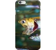 Hungry, Hungry Anchove iPhone Case/Skin