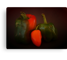 The Three Peppers Canvas Print