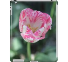 focus on the detail iPad Case/Skin