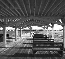 Pavilion Lines by RVogler