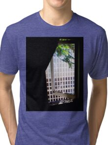 Window Greens Tri-blend T-Shirt