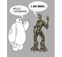 Baymax and Groot Photographic Print