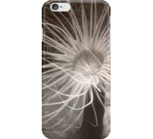 Sea Anemones iPhone Case/Skin