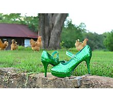 Hens and Stilettos Photographic Print