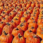 The Great Pumpkin Army by Martha Sherman
