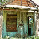 Abandoned Shack in the Motherlode by Martha Sherman