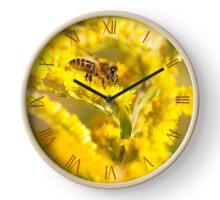 Bee sitting on Goldenrod Clock