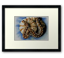 Blood Python Framed Print