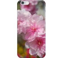 Blossoms and Bugs iPhone Case/Skin