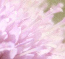Lilac Flower Romantic Macro Photograph Sticker