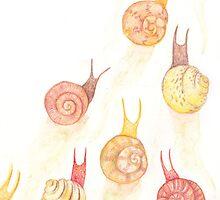 Snail Journey by platypusradio