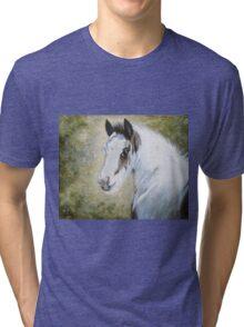 Watermark The Guardian Tri-blend T-Shirt