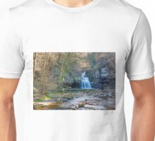 Autumn at Cauldron Falls Unisex T-Shirt