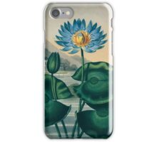 The Blue Egyptian Water Lily iPhone Case/Skin