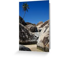 Boulders and Palm Trees Greeting Card