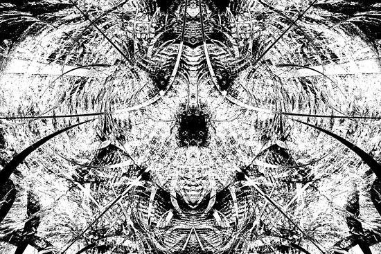 Caught in the Net / Variation by Benedikt Amrhein