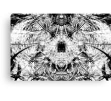 Caught in the Net / Variation Canvas Print