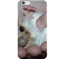 Duprasi Gerbil 6 weeks old having a Tummy Tickle, iPhone Case/Skin