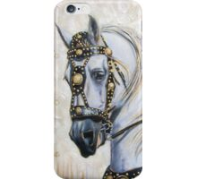 Sir Camelot iPhone Case/Skin