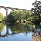 Cefn (Newbridge) Viaduct Wales UK by AnnDixon