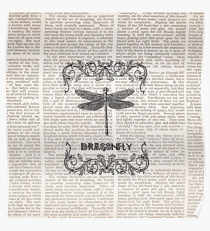 DRAGONFLY paper Poster
