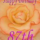 Happy 87th Birthday Flower by martinspixs