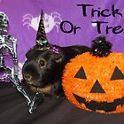 Happy Halloween from Beauty the Guinea Pig  by Michaela1991