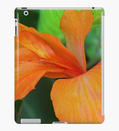 Outback Heart iPad Case/Skin