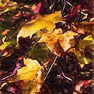 Golden Stems  by Jo-Anne Gazo-McKim