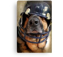 Ready for the Superbowl Canvas Print