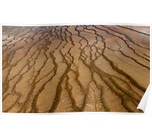 Abstract Microbial Mat Poster