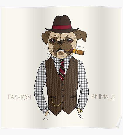 Fashion Animals Poster