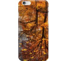 Fall Reflection  iPhone Case/Skin