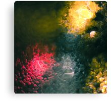 Condensation 92 - You'll Never Walk Alone Canvas Print
