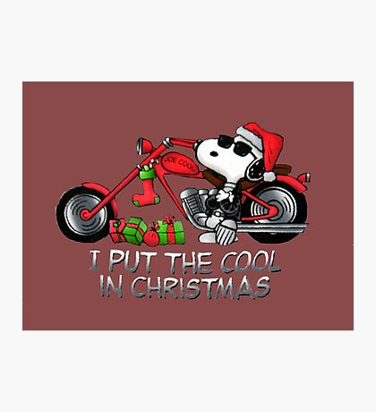 I Put The Cool in Christmas Photographic Print