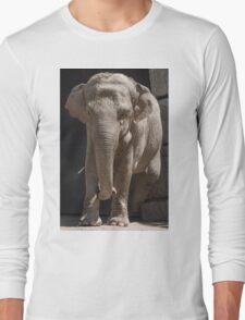 elephant at the zoo Long Sleeve T-Shirt