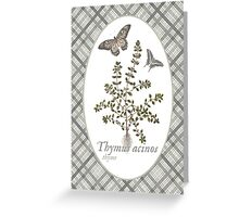 Butterflies and Thyme Greeting Card