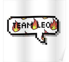 Team Leo.  Poster