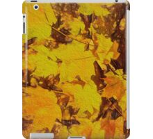 Front and Centre Stage  iPad Case/Skin