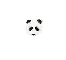 Panda by Melissa Middleberg